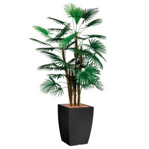 HTT - Kunstplant Rhapis palm in Genesis vierkant antraciet H150 cm - kunstplantshop.nl