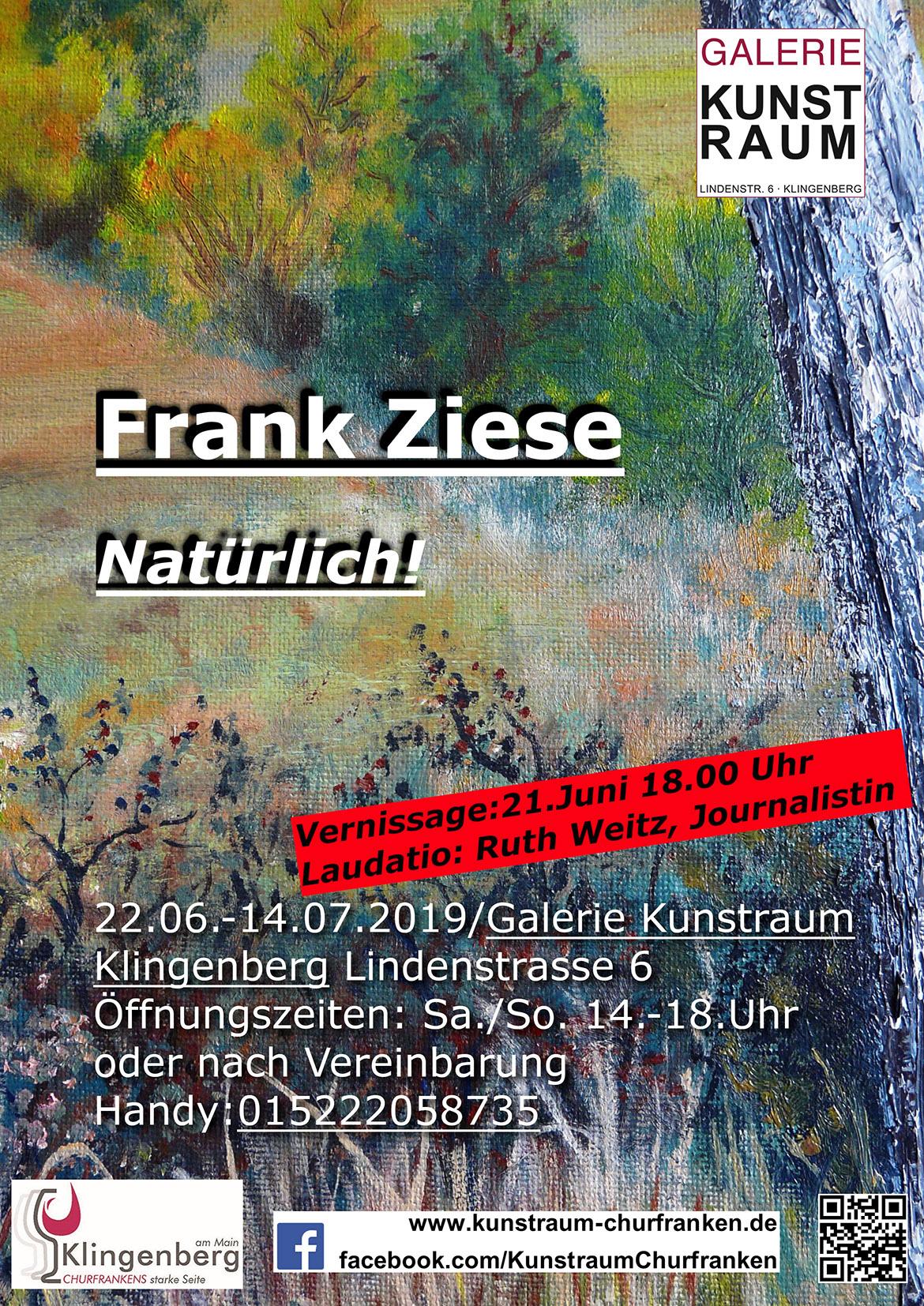Ausstellung Frank Ziese