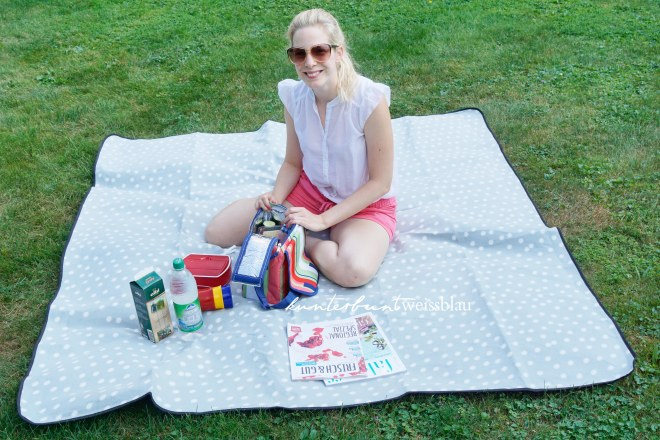 picknicksituation