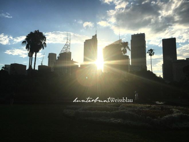 skyscraper-sydney