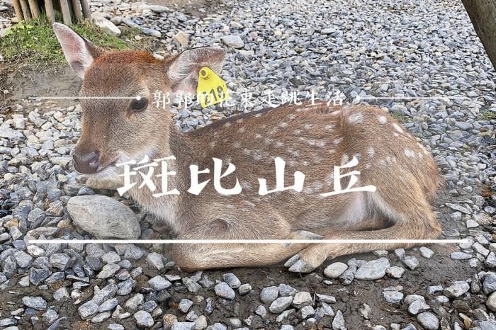 【宜蘭遊記】斑比山丘Bambi Land┃號稱小奈良可以近距離餵鹿和吃下午茶的梅花鹿園區┃