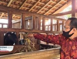 Profesor Sutrisna Wibawa Bakal Bangun Peternakan Terintegrasi Di Kabupaten Gunungkidul