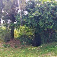 糸満市伊敷にある「二本松の壕」