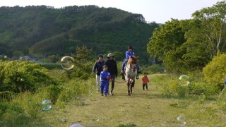2015年:馬プロジェクト本格始動〜ホースセラピーの可能性と被災地の心の復興