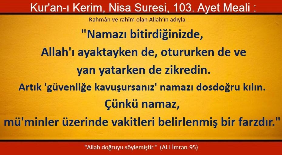 nisa 103