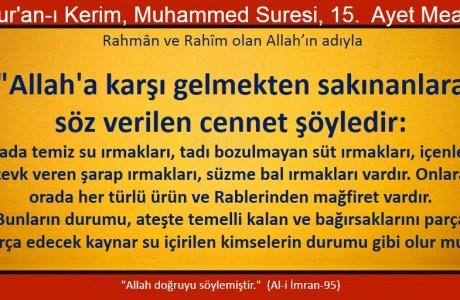 Allah'a karşı gelmekten sakınanlara söz verilen cennet şöyledir;