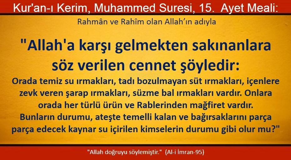 muhammed 15