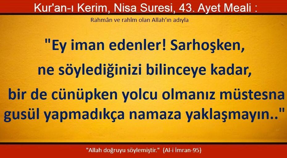 nisa 43