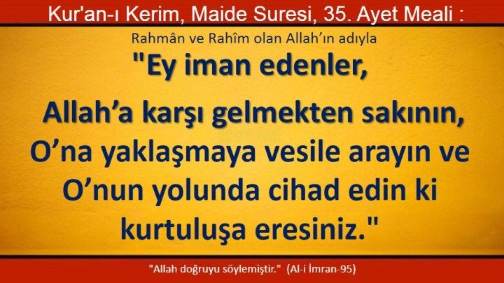 maide 35