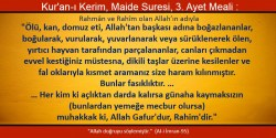 maide 3