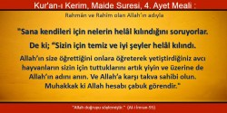 maide 4