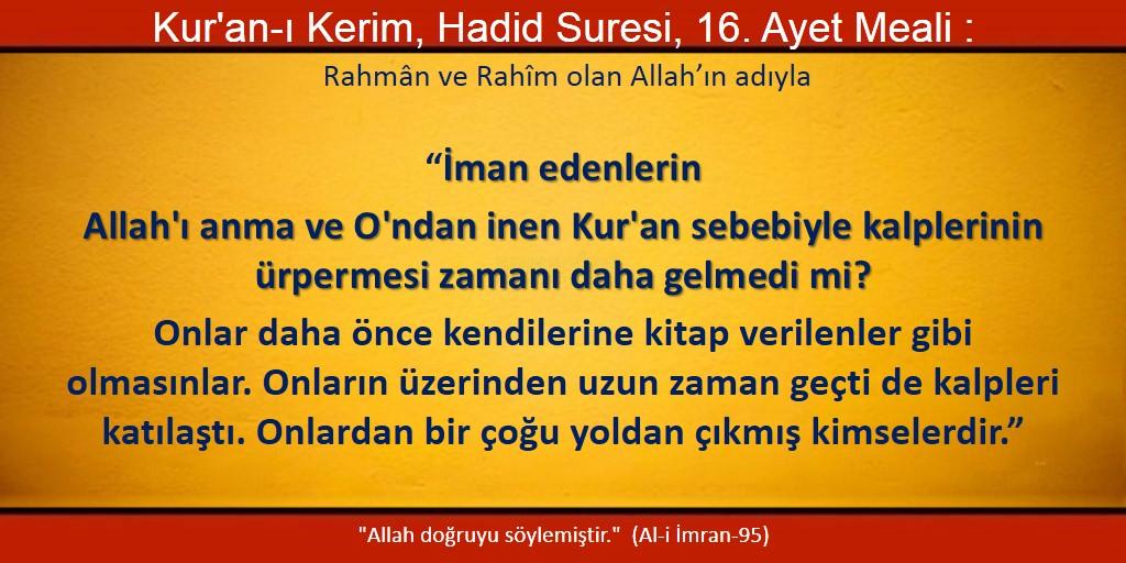 hadid 16