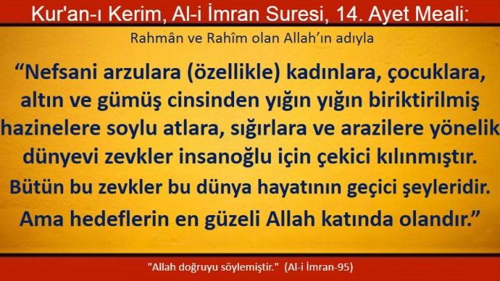 Ali imran 14