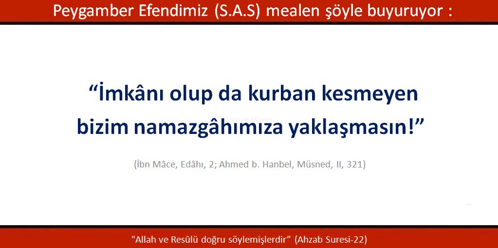 ibn-mace-edahi-2