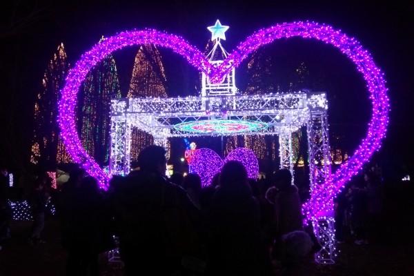 足立区イルミネーション光の祭典