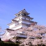 鶴ヶ城桜の見頃や開花予想見所やライトアップ桜まつりアクセス駐車場は?