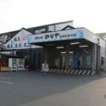 富津の漁師料理かなやの煮穴子丼と穴子天丼といくら丼とかじめ購入の感想
