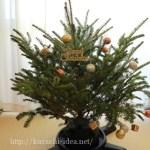 IKEAクリスマスツリー2016生もみの木の発売日や再入荷は?フェイクツリーもご紹介