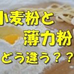 薄力粉と小麦粉の違いって何?粉の種類や代用についても解説!