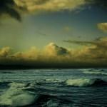 海水魚水槽台風一過 回復日記