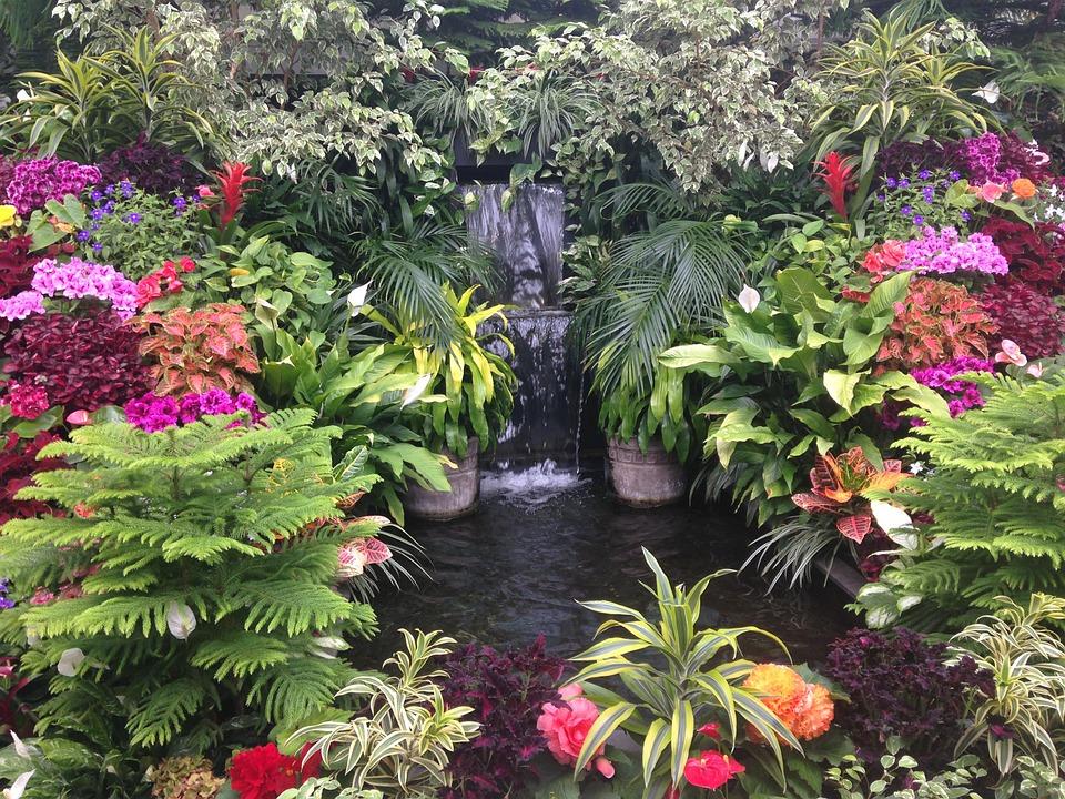 滝 アクアテラリウム 陸地 作り方 生体 30cm キューブ 水槽 フィルター 植物