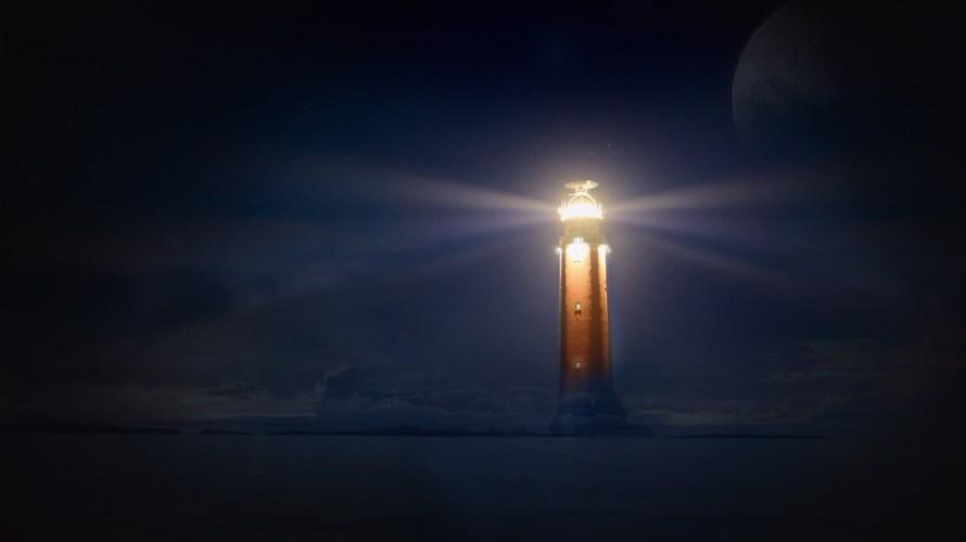 灯台下暗し?いえイソギン下暮らし易しです