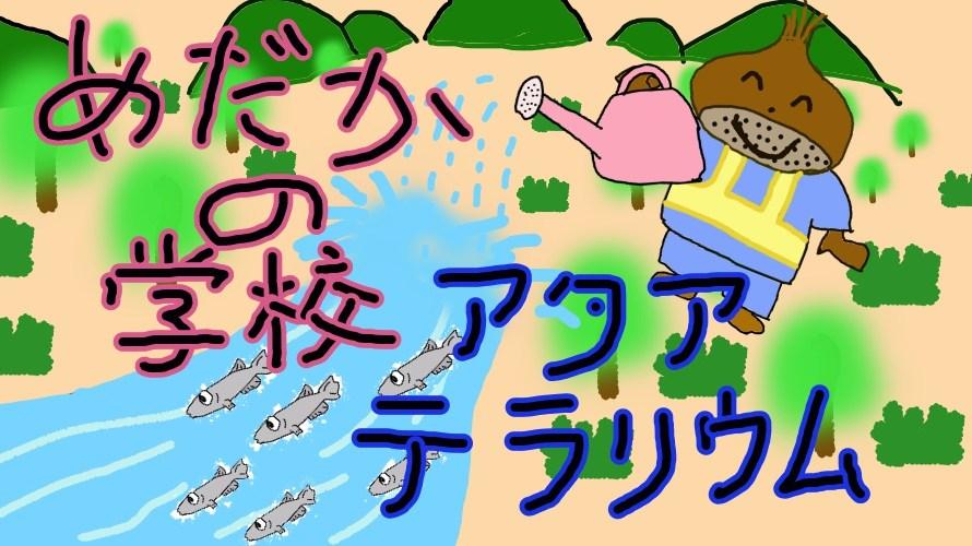【実験動画有】めだかの学校アクアテラリウム水槽の作成その2 川底と池底の形作り