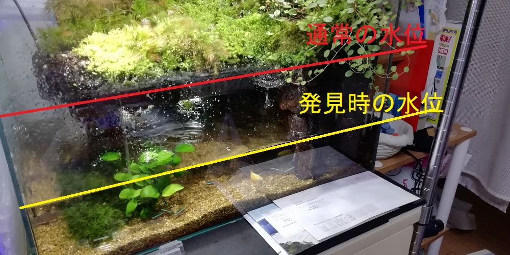 水槽水漏れ事件の現場