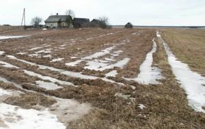 Na skutek samowoli urzędników prawowici właściciele ziemi na jej zwrot czekają przez długie lata Fot. Marian Paluszkiewicz