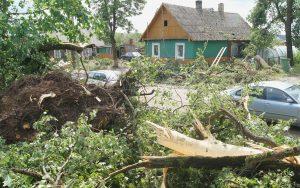 Gwałtowna wichura spadła na rejon solecznicki nad ranem 9 lipca  Fot. Marian Paluszkiewicz