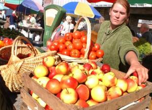 W odróżnieniu od Litwy, na rosyjskim rynku polskie jabłka były cenione dotąd za dobrą jakość i niską cenę    Fot. Marian Paluszkiewicz