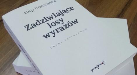 kultura Brzozowska2 09