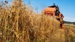 Rolnicy liczą zyski i straty