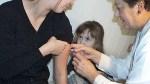 W tym roku można wybrać szerszą i silniejszą ochronę przeciwko grypie