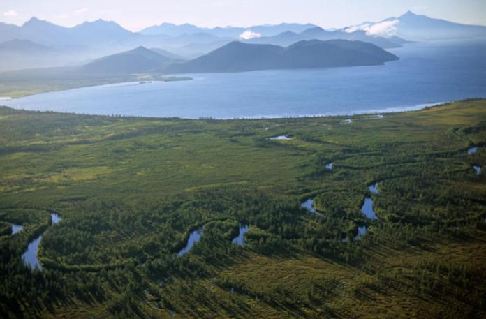 Ekolodzy zaniepokojeni skażeniem na Kamczatce, przyczyny nie są znane