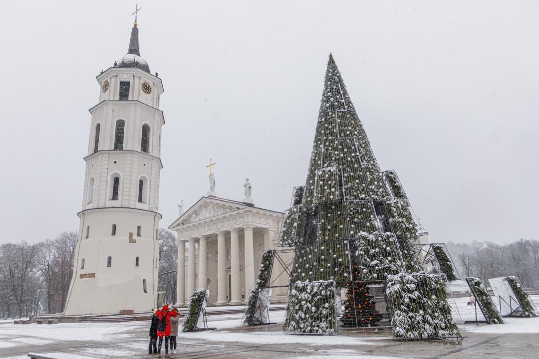 Bożonarodzeniowa choinka na placu Katedralnym w Wilnie