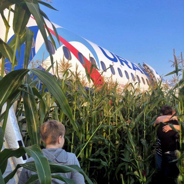 Airbus в кукурузе: самолёт, летевший из Москвы в Симферополь, совершил аварийную посадку в кукурузном поле