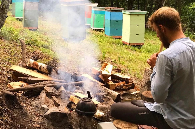 «Пчела была сильная», но с мёдом в этом году у пчеловодов в ЕАО пролёт. Стоит ли ждать роста цен на лакомство?🐝