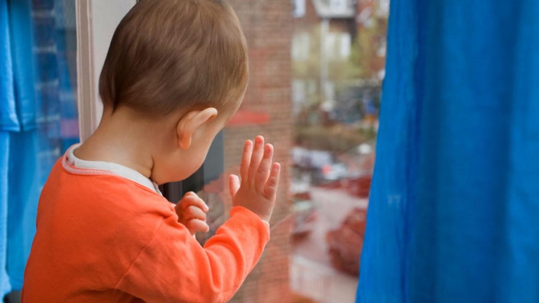 В Биробиджане ребенок упал со второго этажа в клумбу с цветами