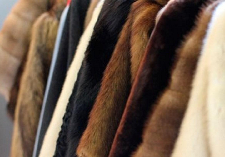 Пенсионерка в Биробиджане купила две «норковые» шубы за 60 тысяч рублей. Но норками они даже не пахли