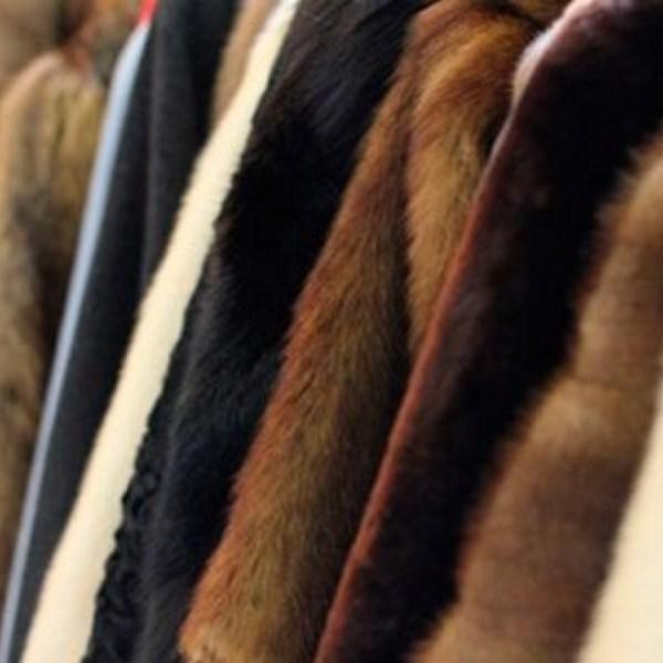 """Пенсионерка в Биробиджане купила две """"норковые"""" шубы за 60 тысяч рублей. Но норками они даже не пахли"""