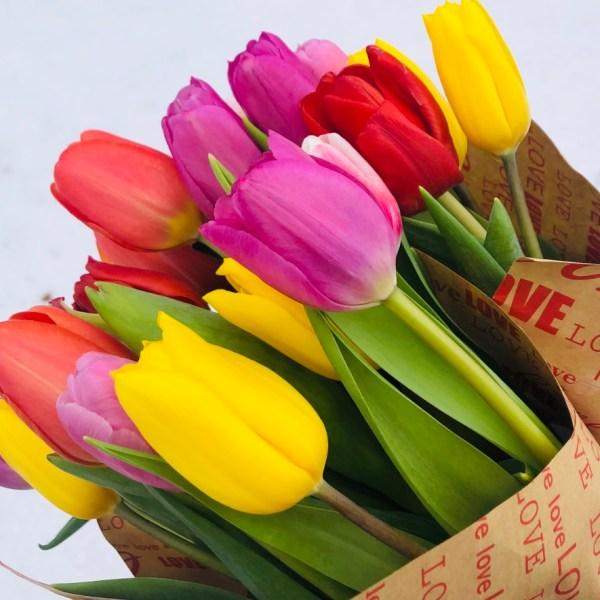 Как выбрать самые свежие цветы к празднику и как  сохранить свежесть букета?
