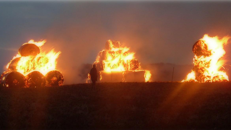 «Кругом примятая трава и следы»: в селе Венцелево Ленинского района ЕАО подозревают поджог более 200 рулонов сена