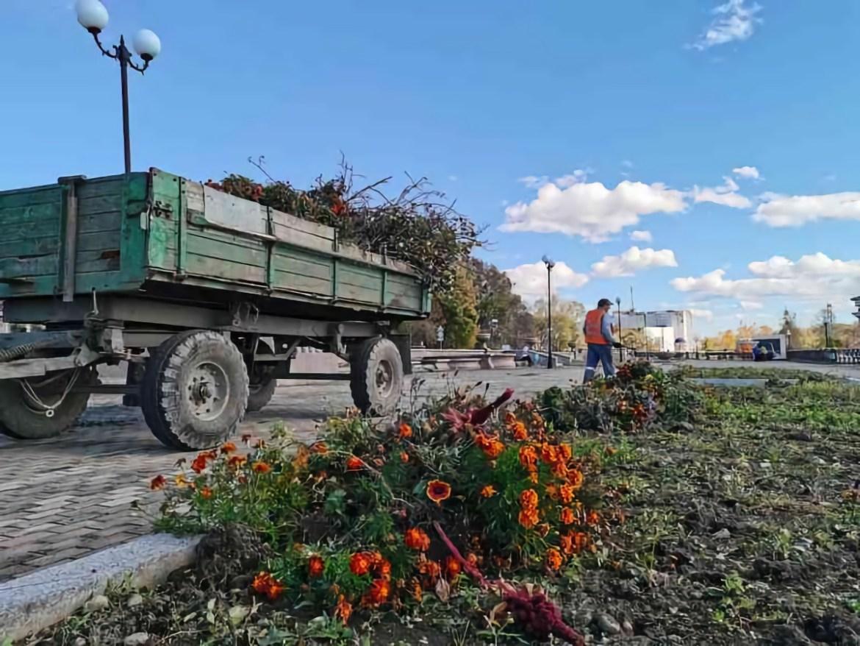Биробиджанские коммунальщики собирают семена с клумб города и наводят порядок