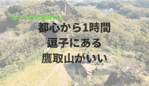 晴れた休日、軽めに自然にふれたい方にオススメ!「逗子の鷹取山」でトレッキング!都心から近くて空いてて穴場です!子供でも登れる!