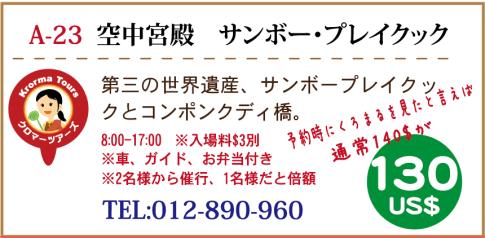 info19