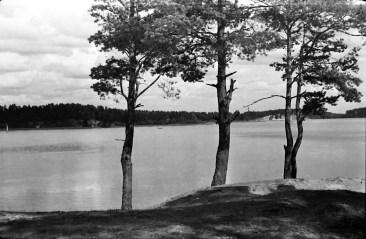 1957_Borki (2)