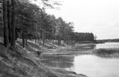 1957_Borki (3)