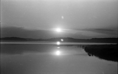 1959_necko_klonownica_wyc (7)