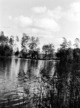 1960 (3)